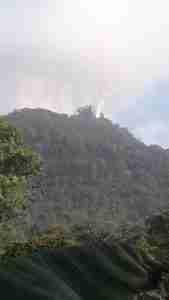 Incendios forestales en Pico Bonito